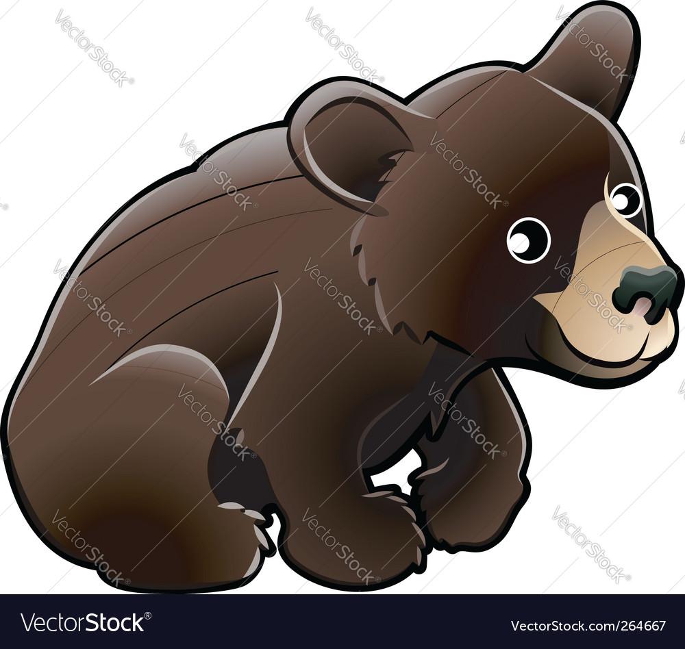 American black bear vector image