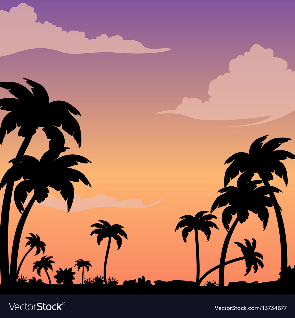 Sunset on a tropical island against a silhouette
