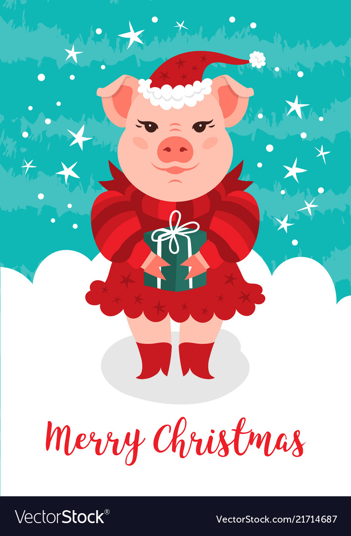Funny Christmas Images.Merry Christmas Card Funny Christmas Pig A