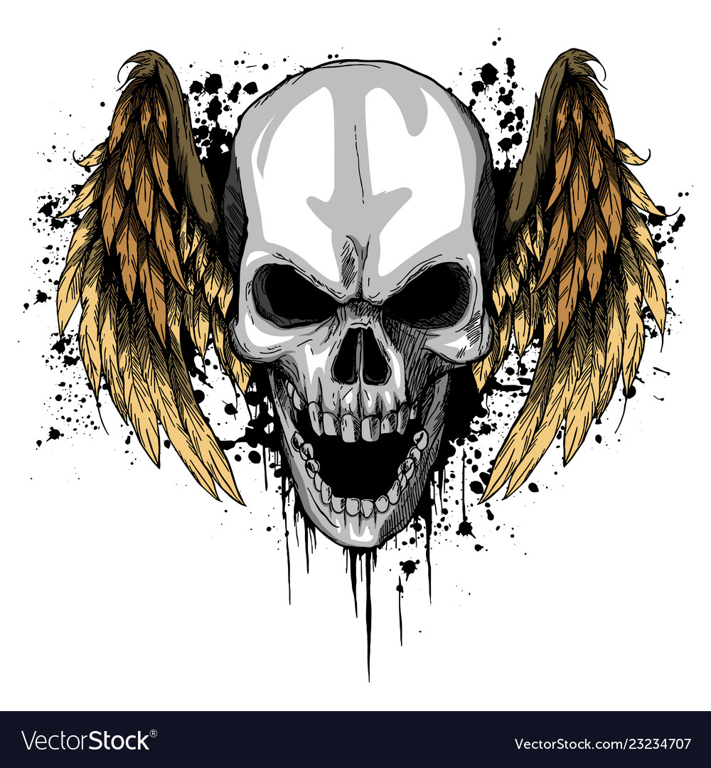 A human skull with wings