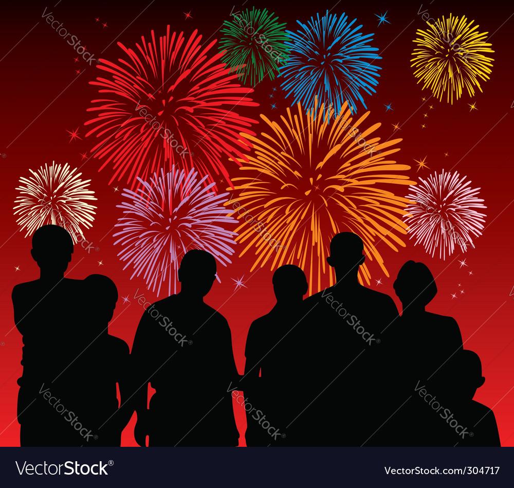 Fireworks display vector image