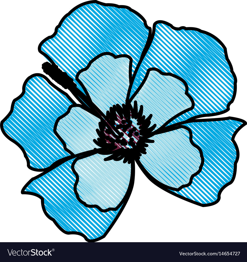 Drawing blue flower decoration floral ornament
