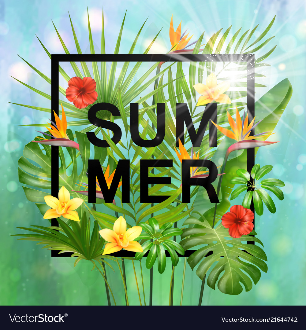 Summer composition with leaves and flowers