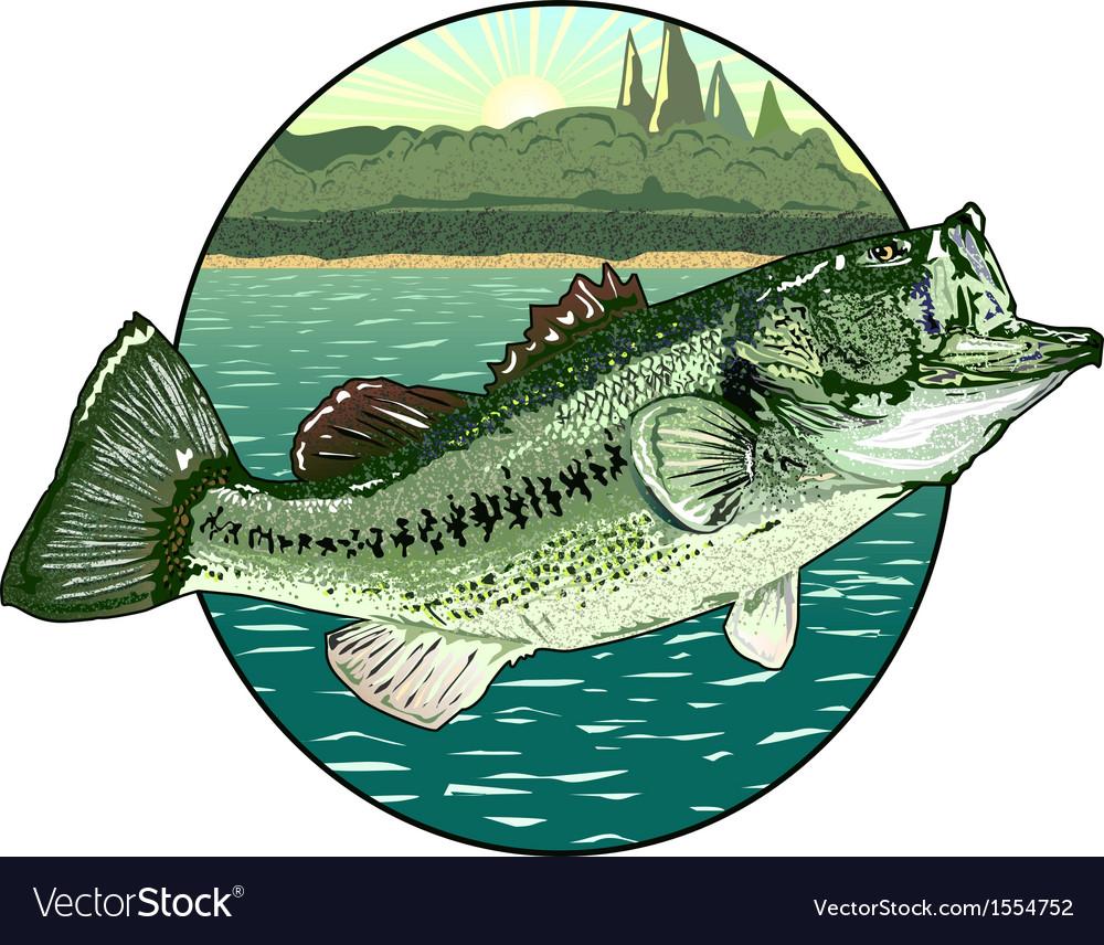 Big mouth bass vector image