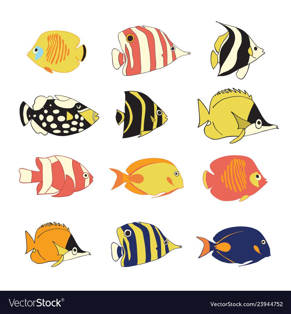 Icon set tropical reef fishes isolated