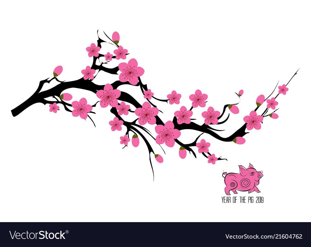 Japan Cherry Blossom Branching Tree Japanese Vector Image
