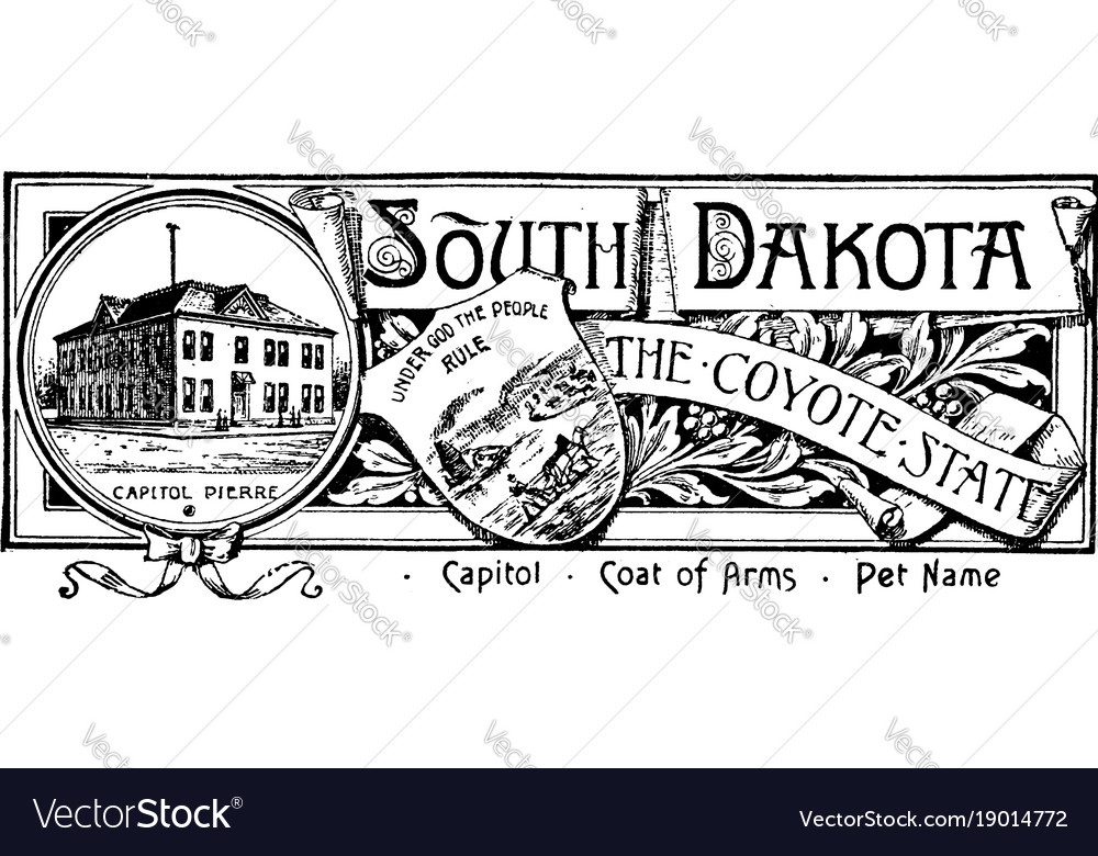 The state banner of south dakota the coyote state