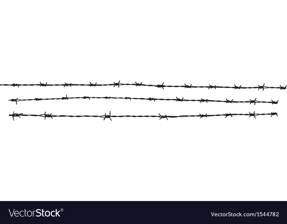 Barbed wire MG 0751