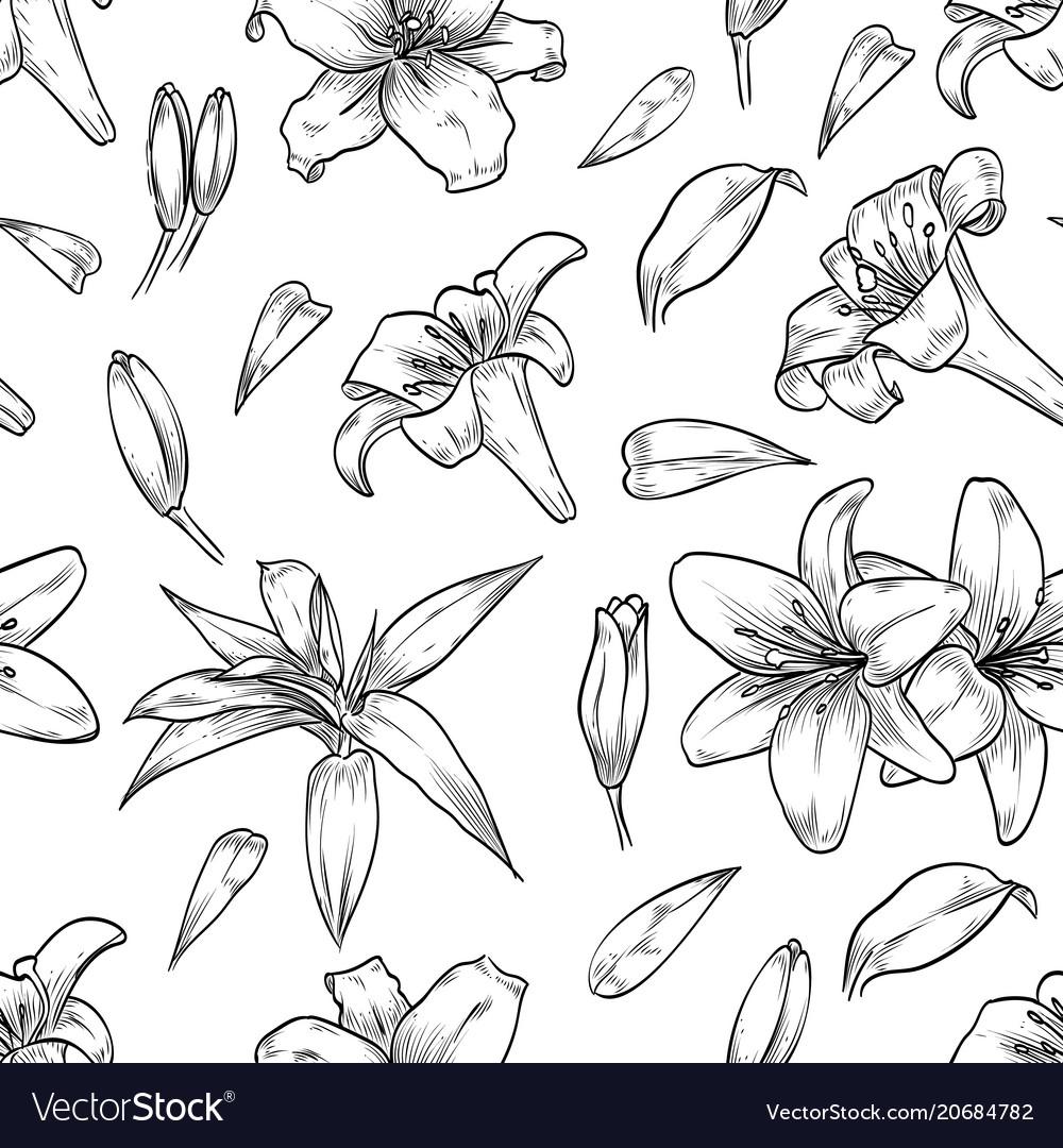 Hand drawn lily seamless pattern