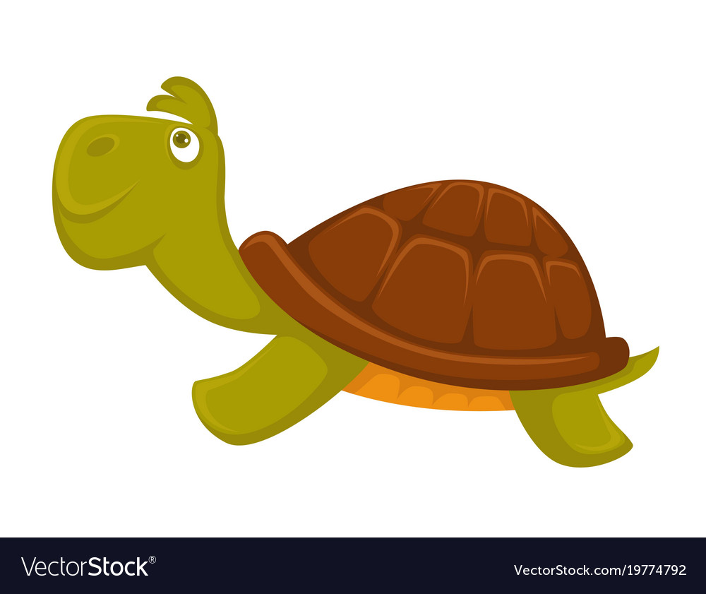 Turtle cartoon pet flat icon