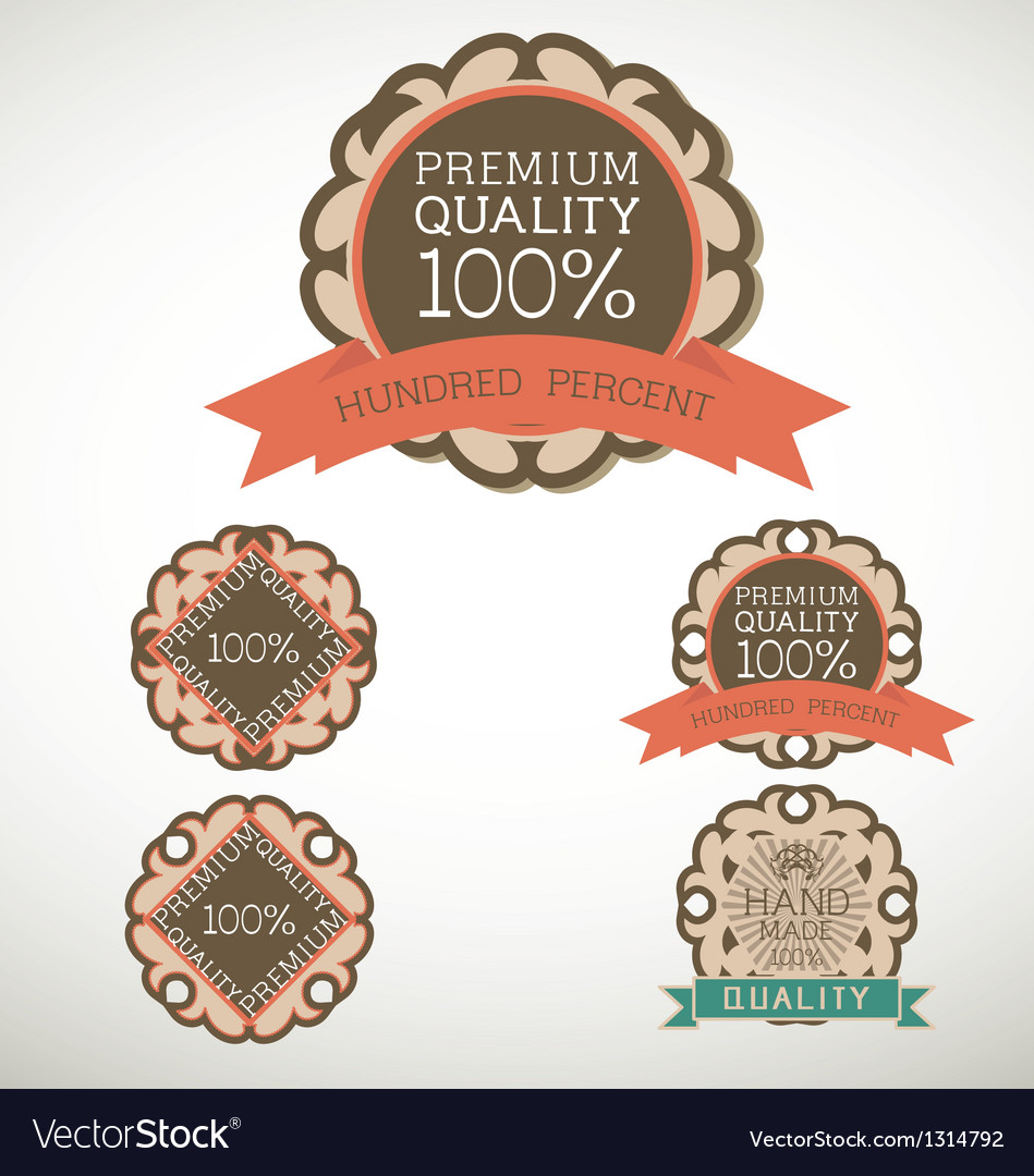 Vintage label Style with five Design Element vector image