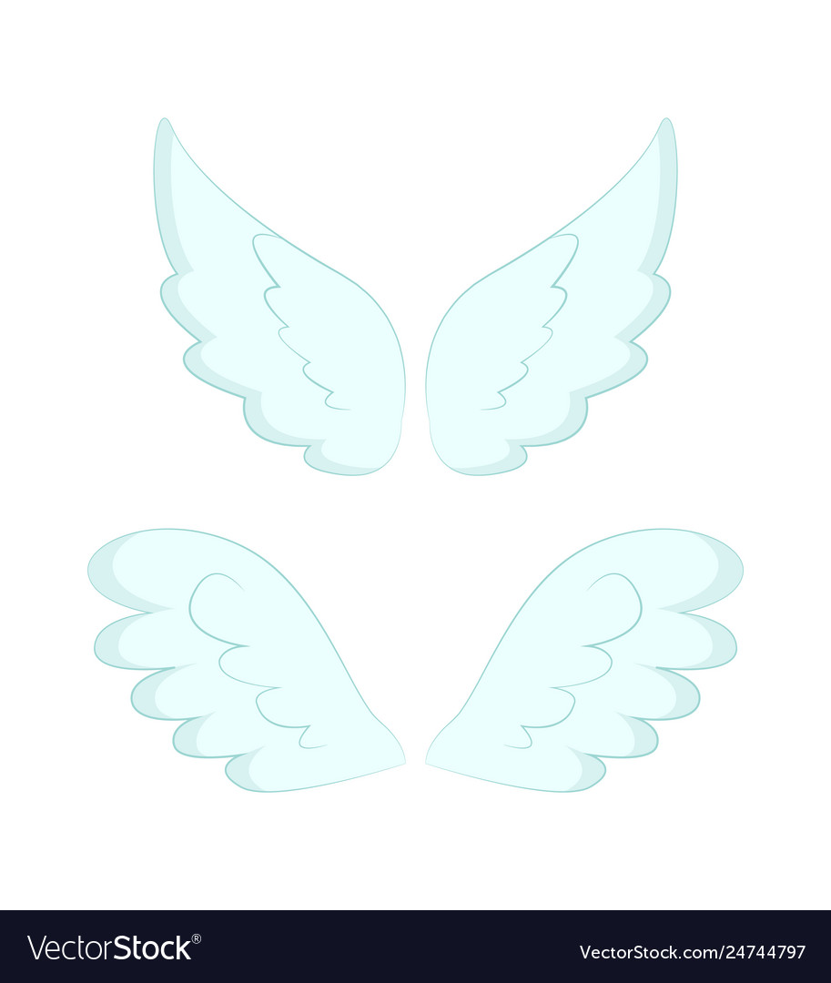 Angel wings white feathers isolated object