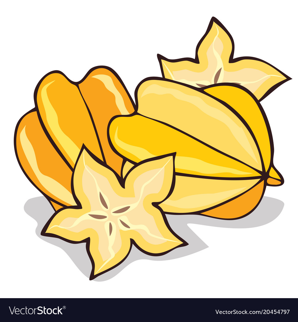 isolate ripe starfruit or carambola royalty free vector