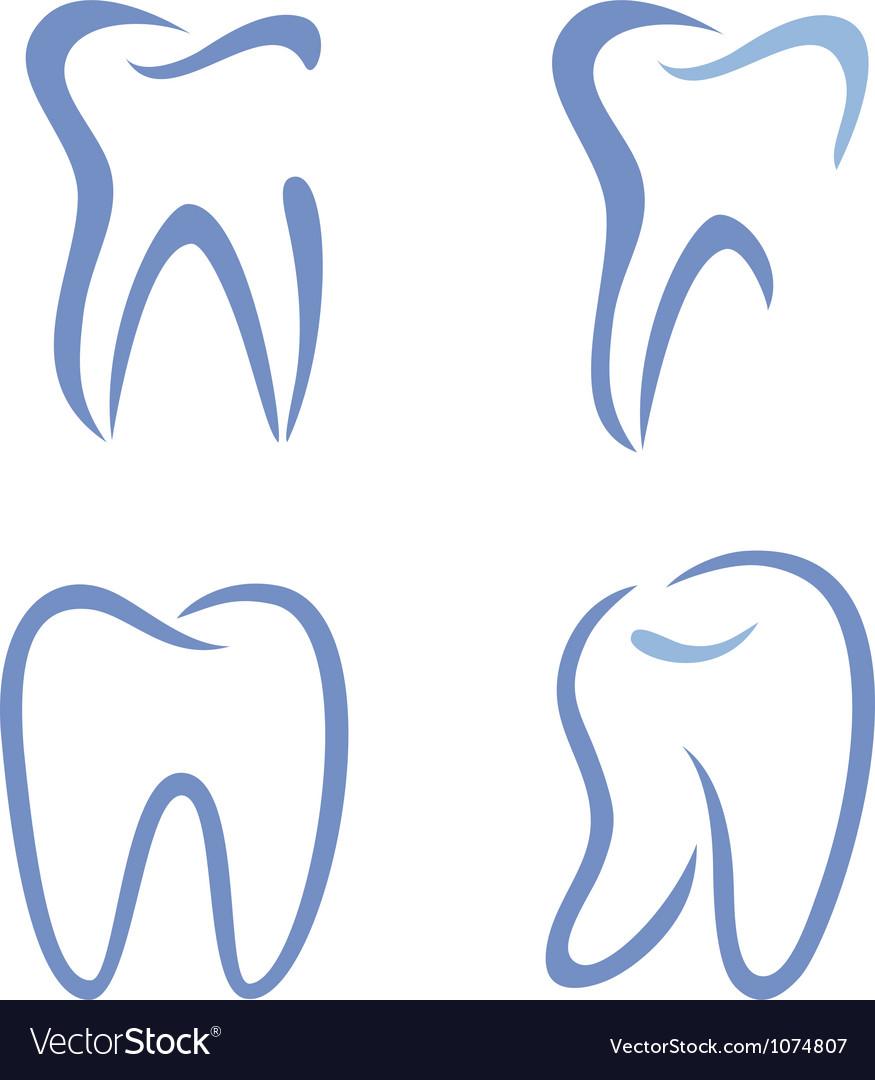 Teeth drawing vector image