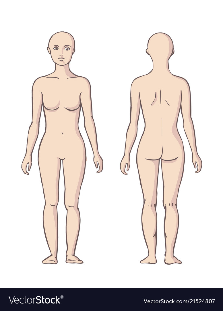 Woman Body Front And Back Royalty Free Vector Image