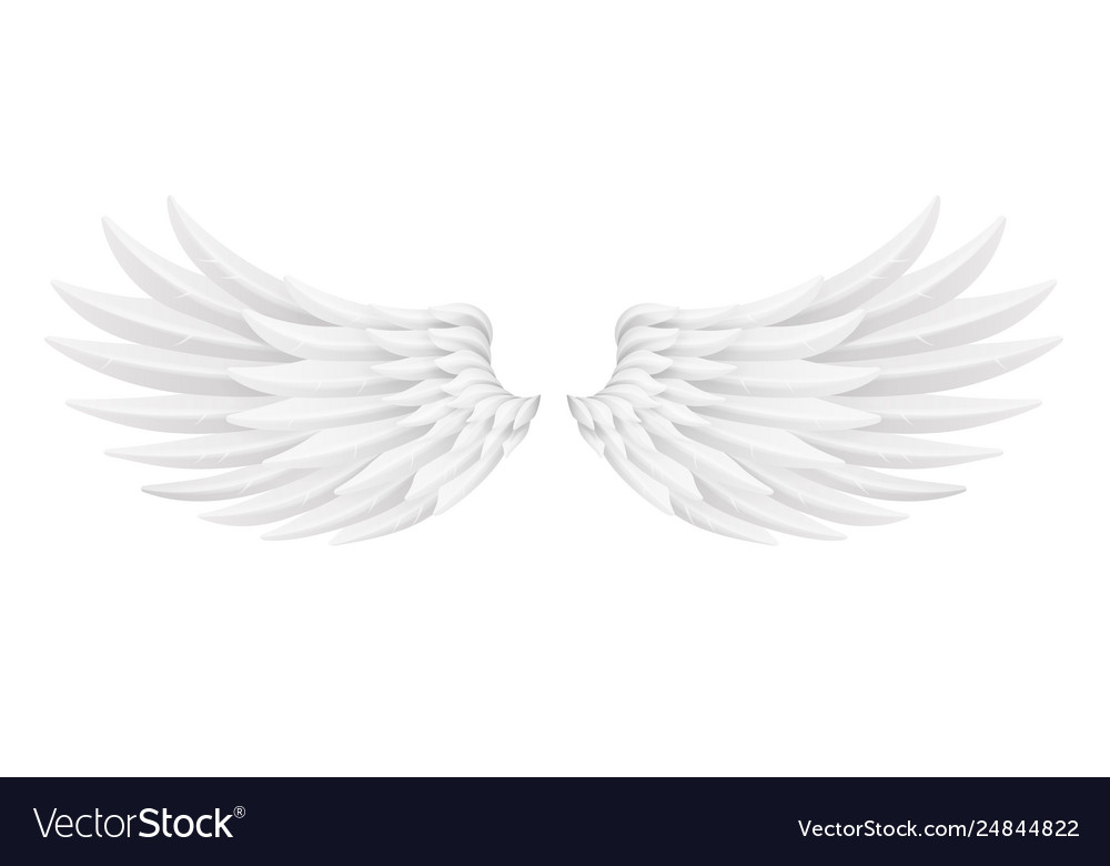 White bird angel animal fly wings 3d realistic