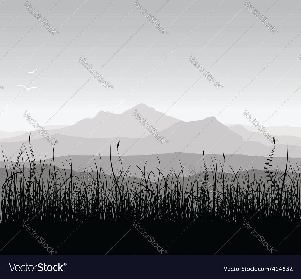 Landscape with grass and mount
