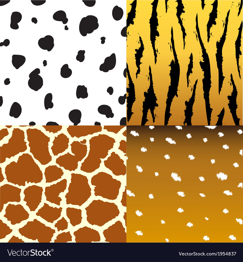 Pattern of animals vector image