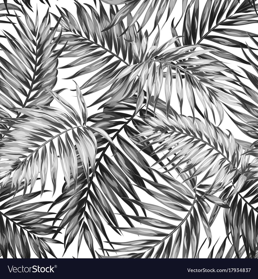 Seamless pattern tropic jungle leaves black white vector image