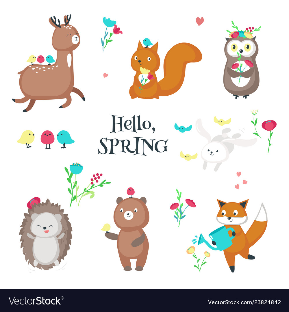 Cute funny spring animals isolated