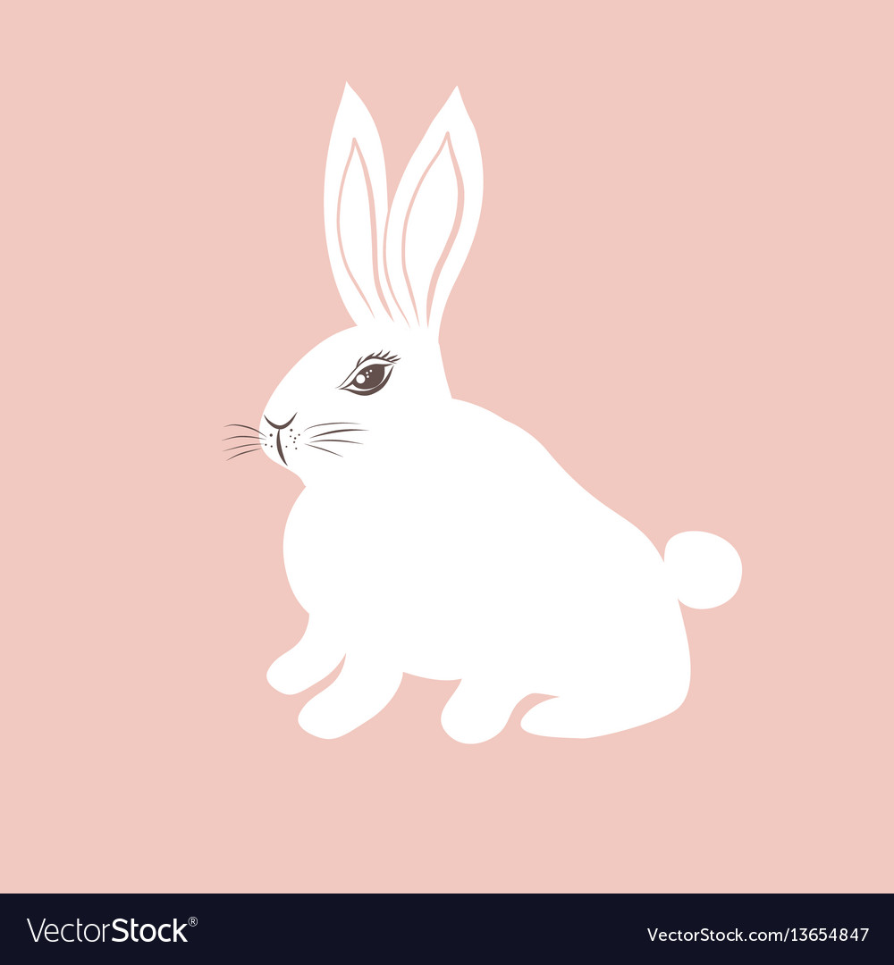 Cute white bunny on pink background