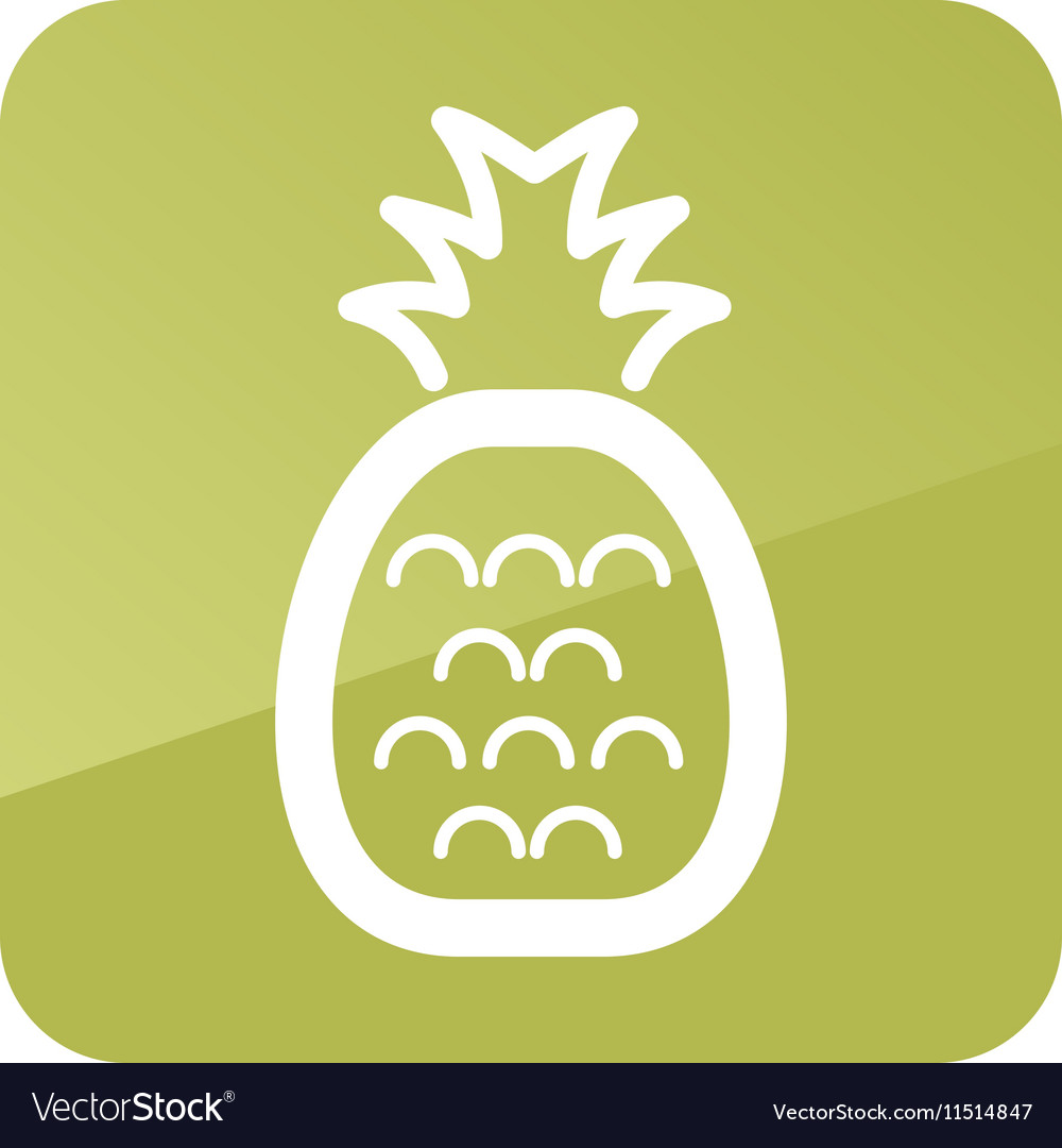 Pineapple outline icon Tropical fruit vector image