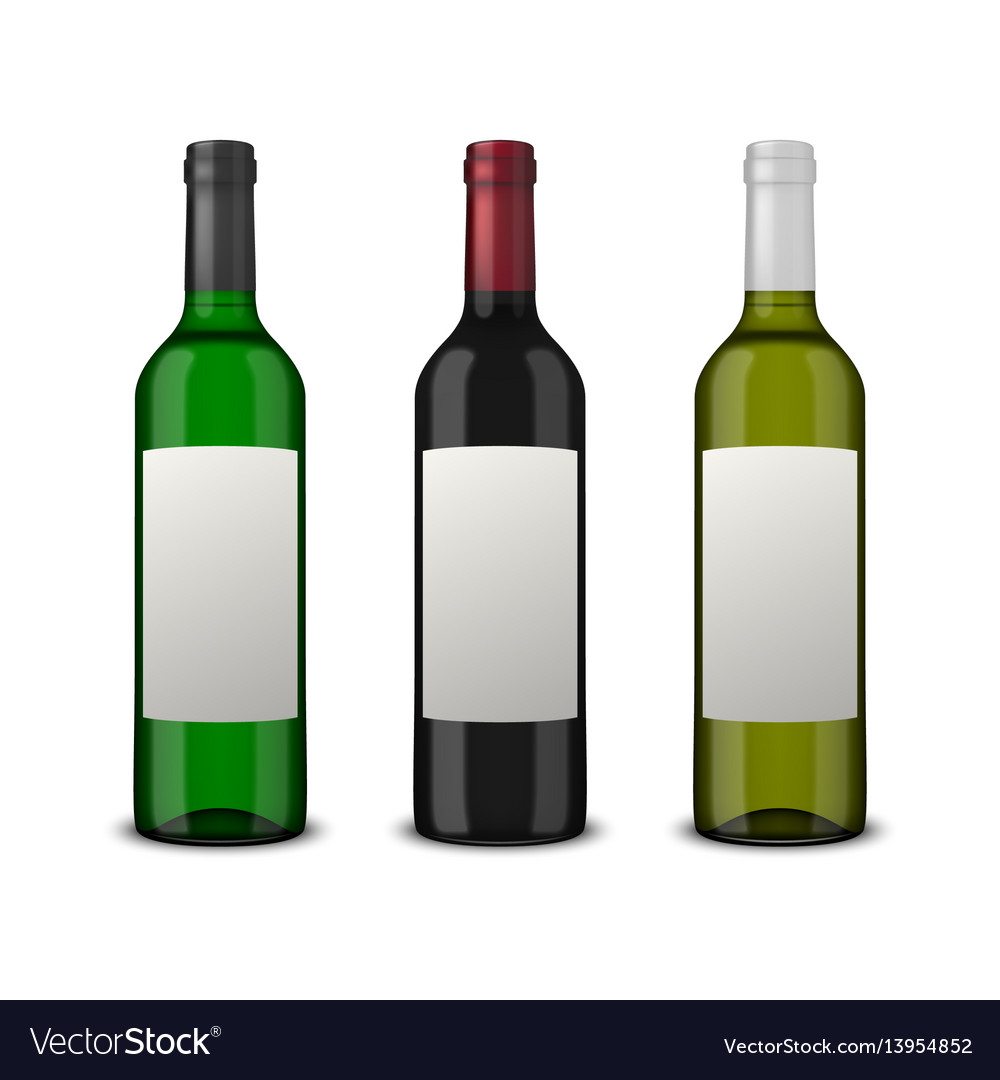 Set 3 realistic wine bottles with blank
