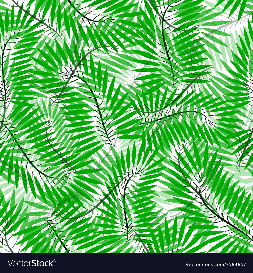 Seamless of Chamaedorea leaves vector image