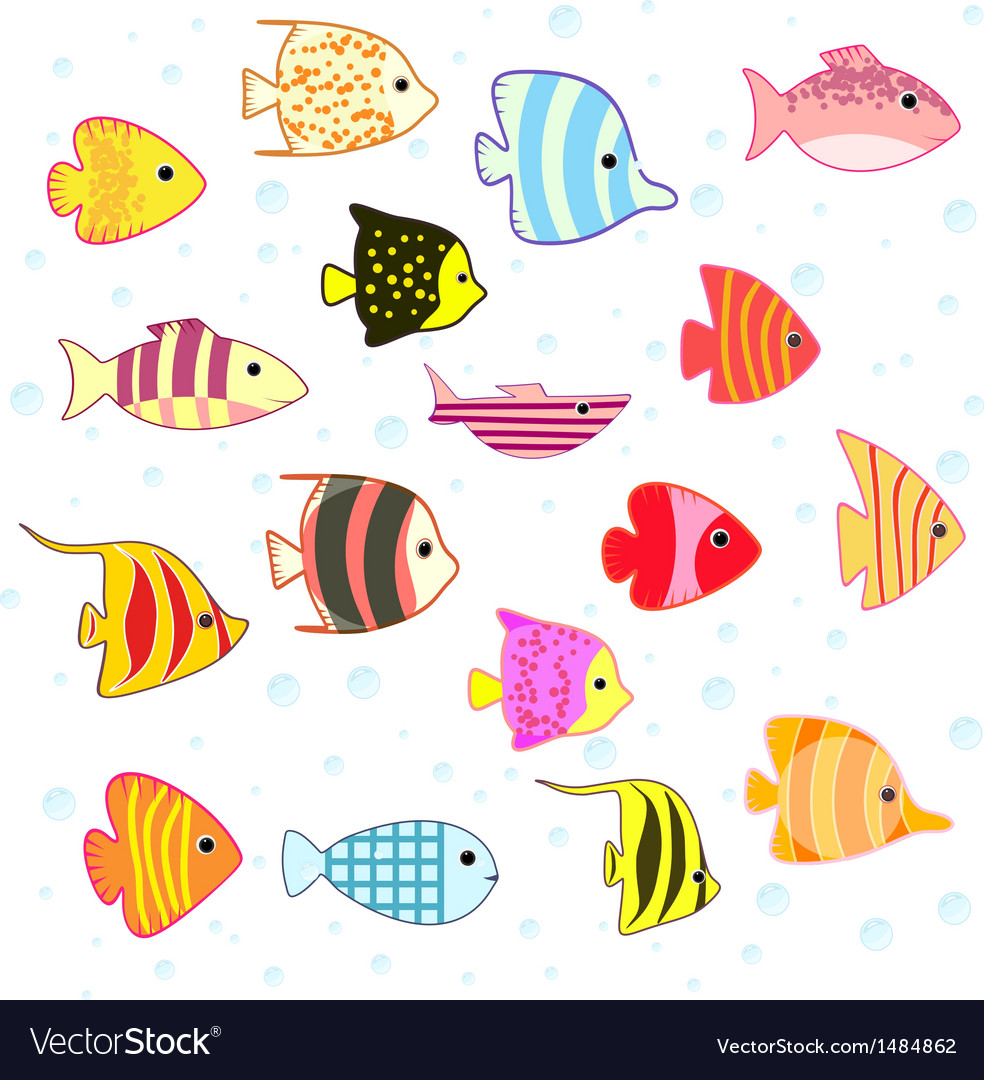 Cartoon tropical fish set vector image