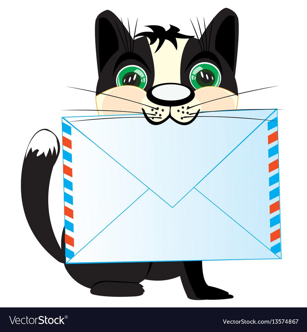 открытка котик с письмом ангина