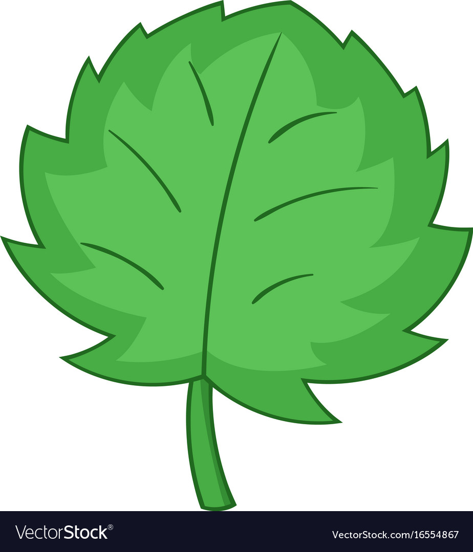 Grape wine leaf icon cartoon style vector image