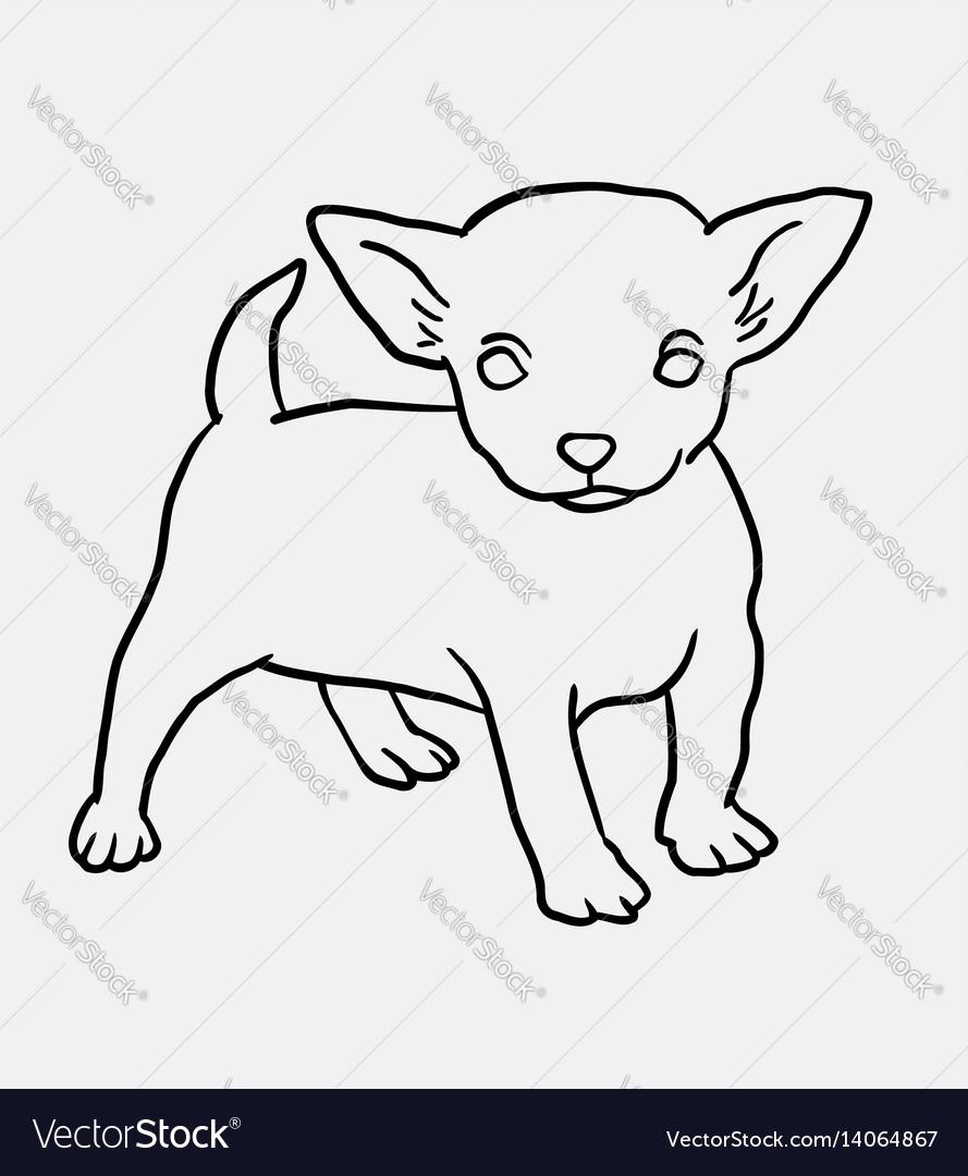 Puppy standing sketch