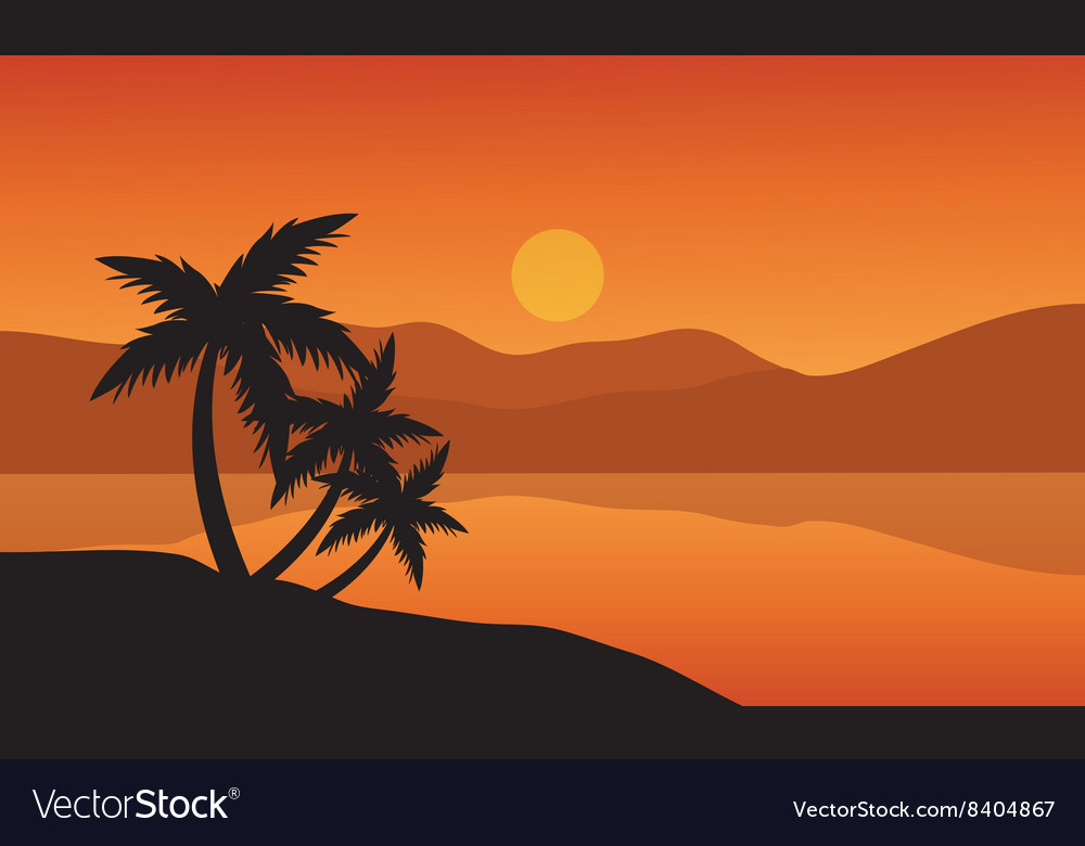 Tree palm trees silhouette on sunset tropical