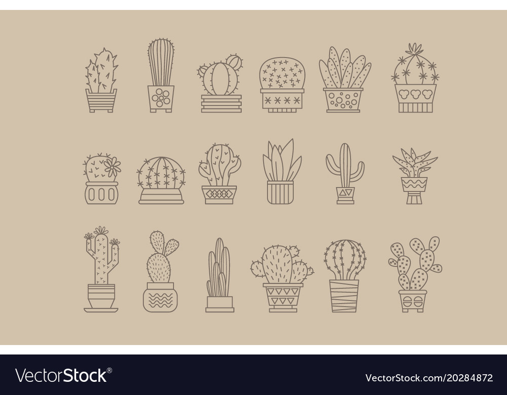 Cactus and succulents in pots outline icons