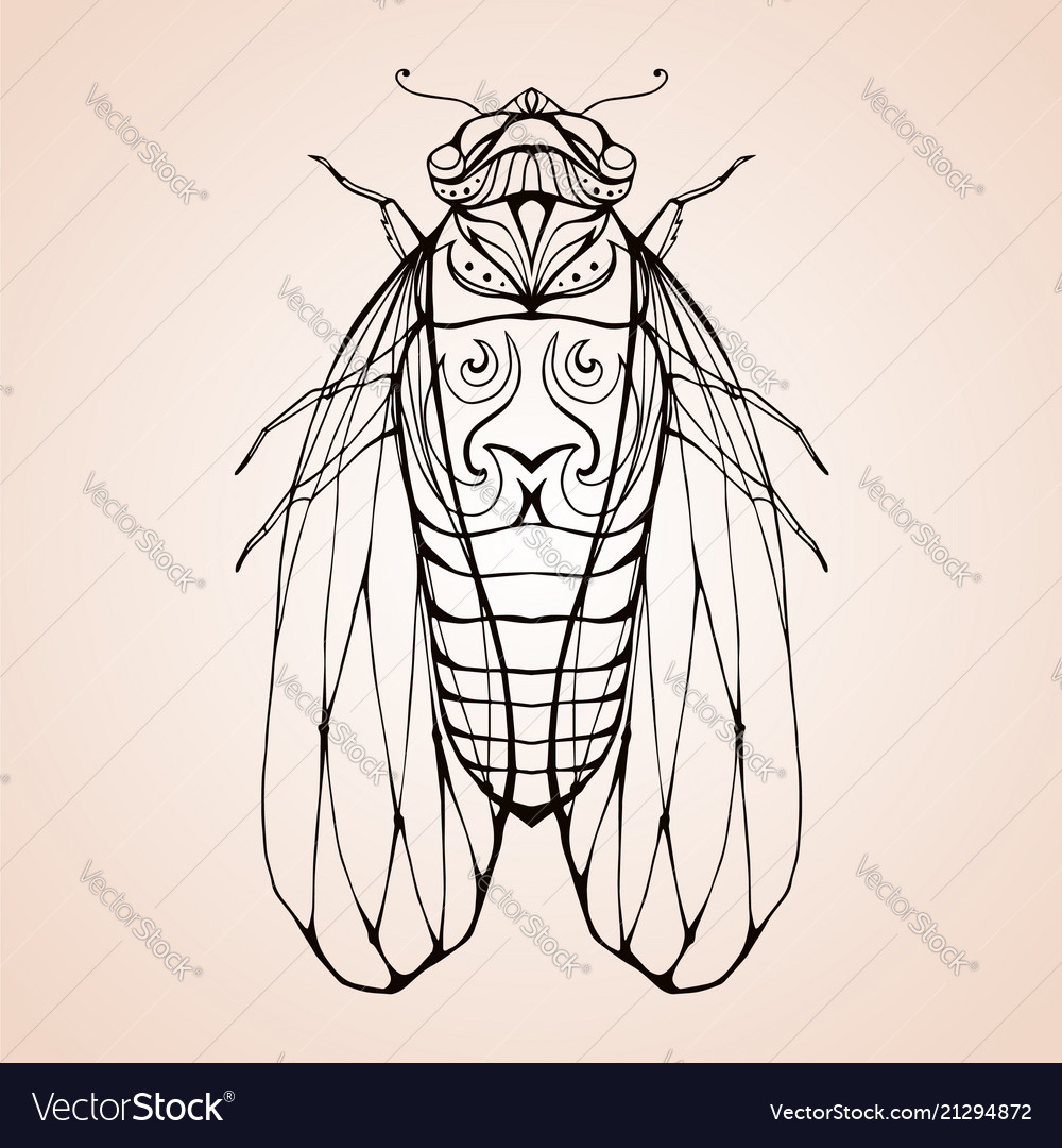 Cicada with boho pattern element for color