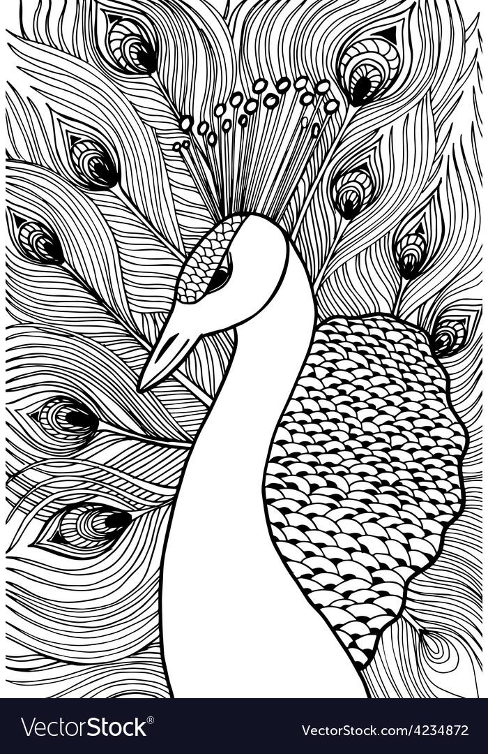 Decorative ornamental peacock Doolle style