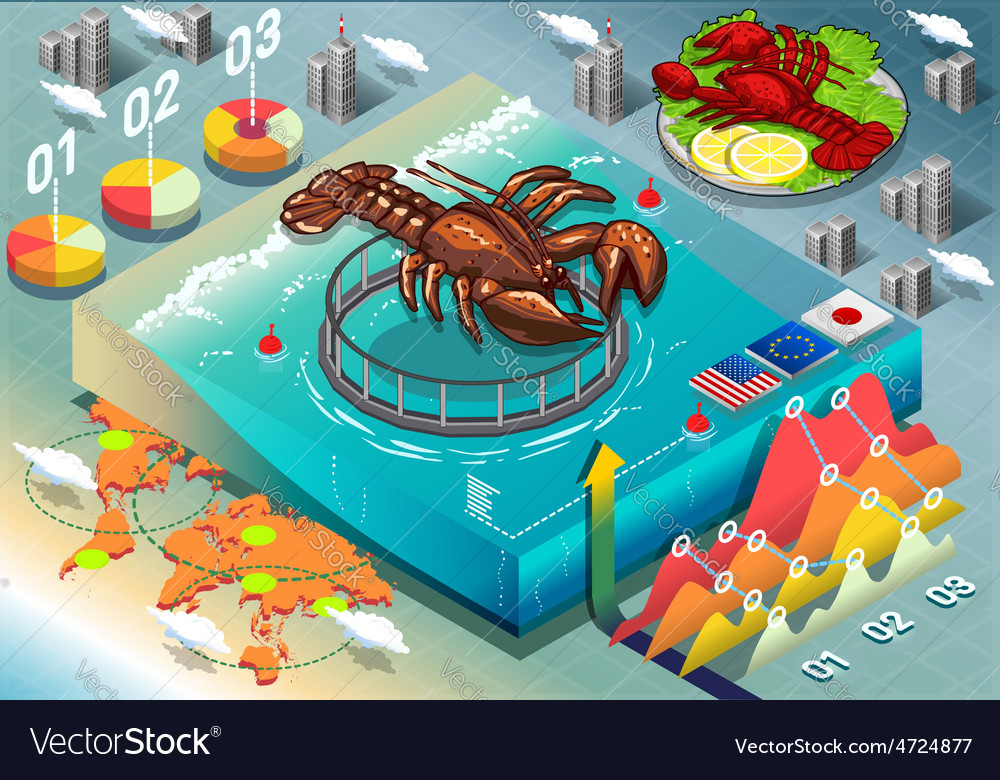Isometric Infographic of Lobster Breeding vector image