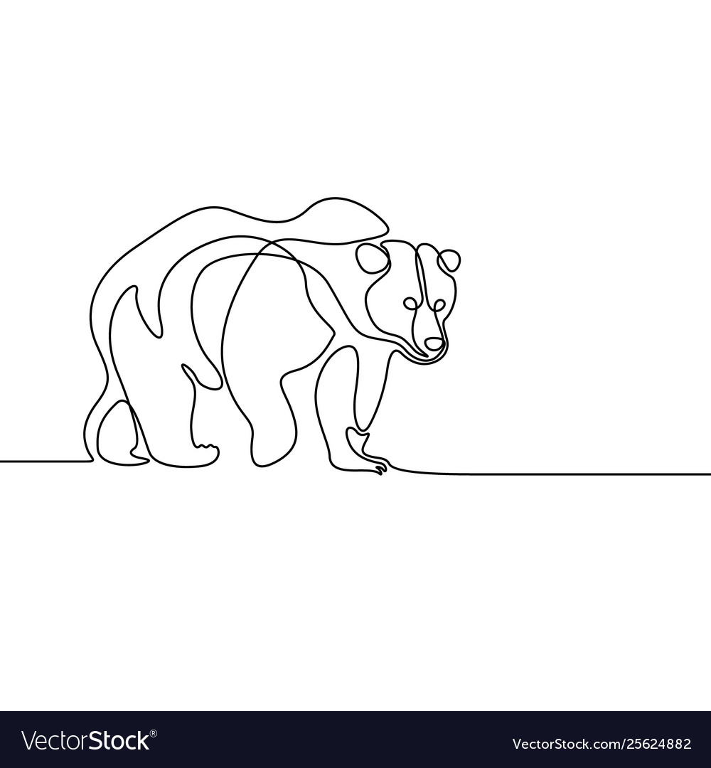 Continuous line going bear on white background