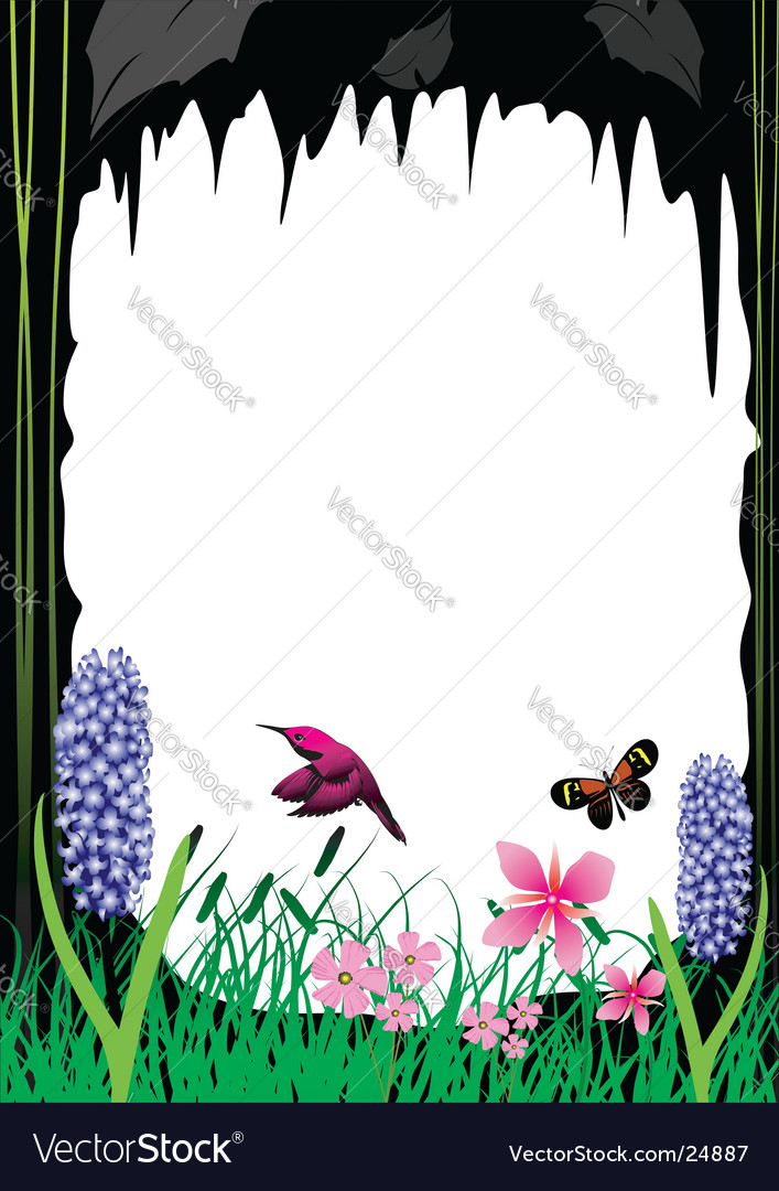 flowers background white. Flower Background White Vector