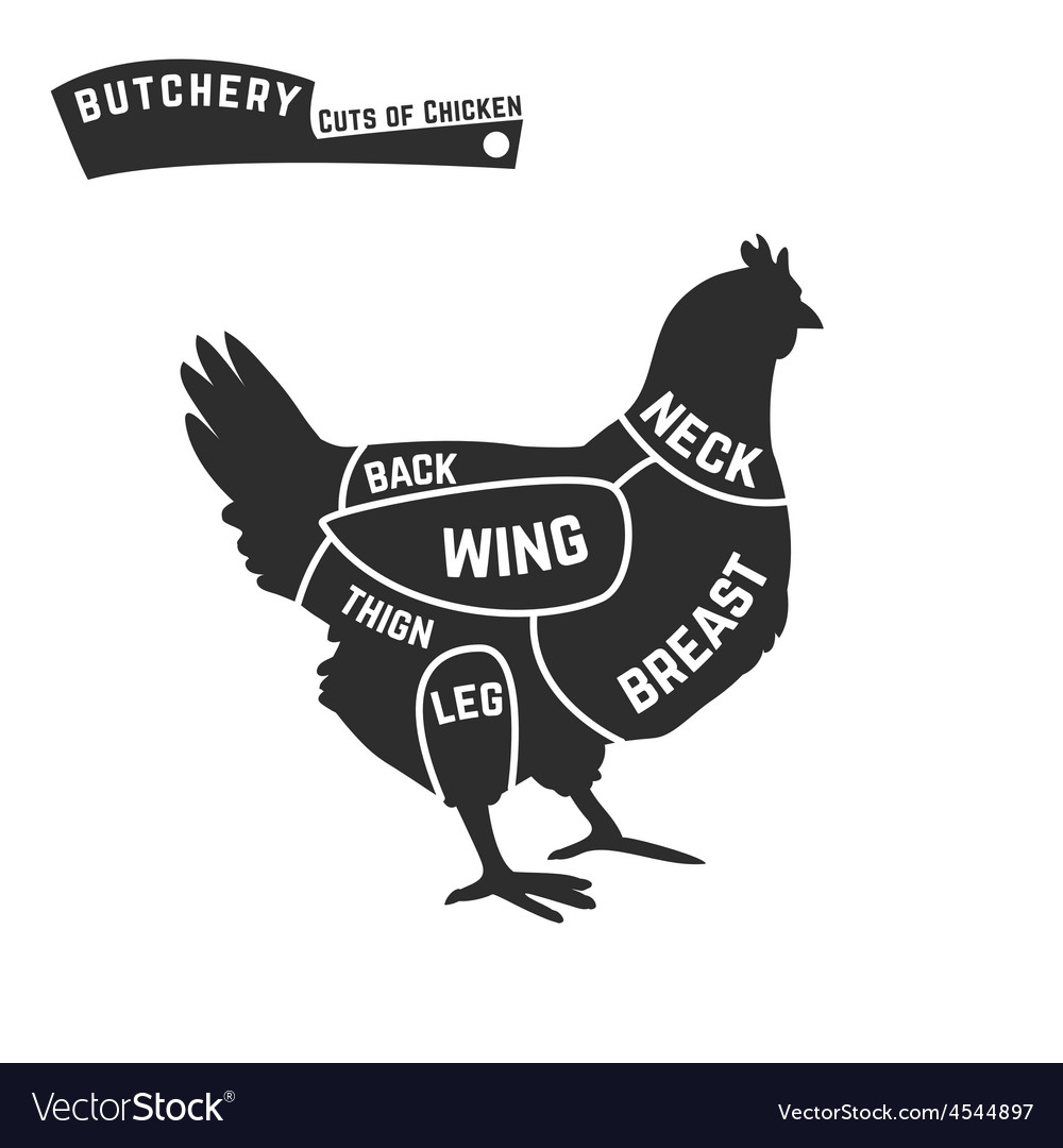 cuts of chicken butcher diagram royalty free vector image rh vectorstock com chicken meat cuts diagram Diagram of a Chicken Head