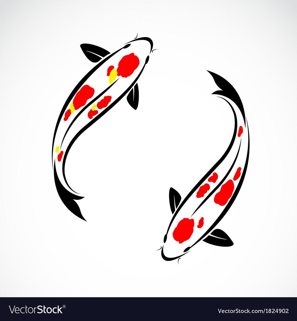 carp koi royalty free vector image vectorstock rh vectorstock com chinese koi fish vector japanese koi fish vector free