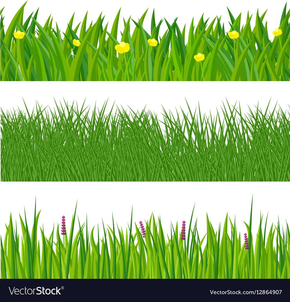 green spring grass royalty free vector image vectorstock vectorstock