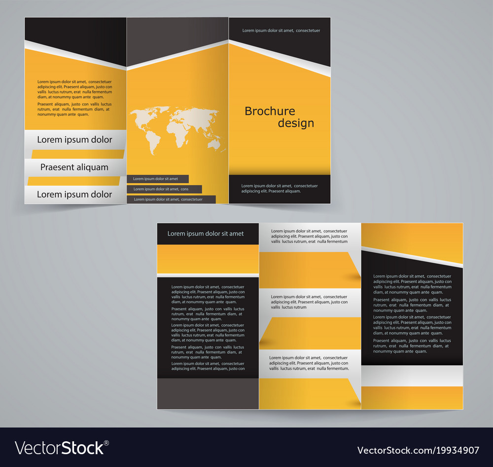 three fold business brochure template royalty free vector