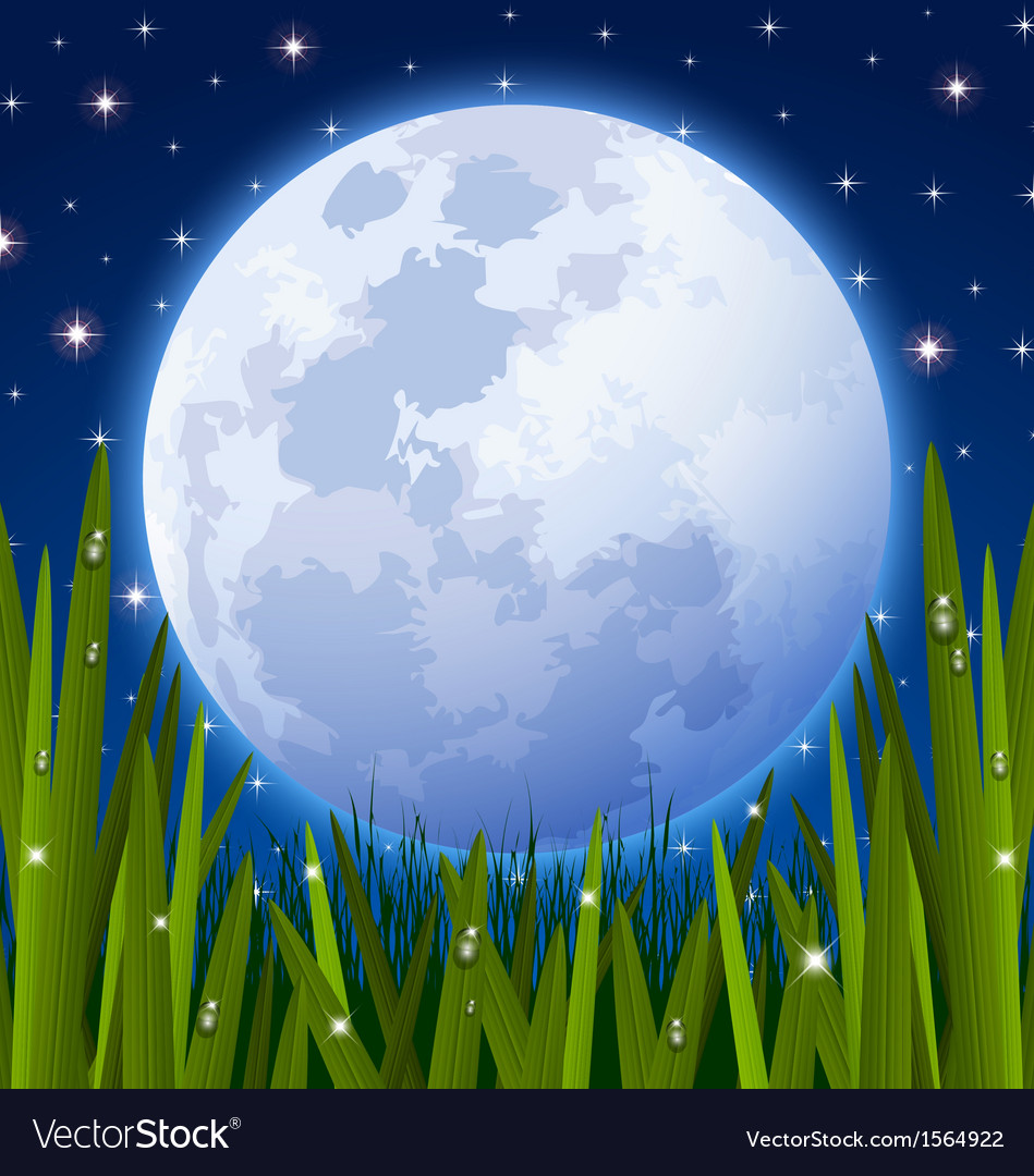 Full moon and grass meadow