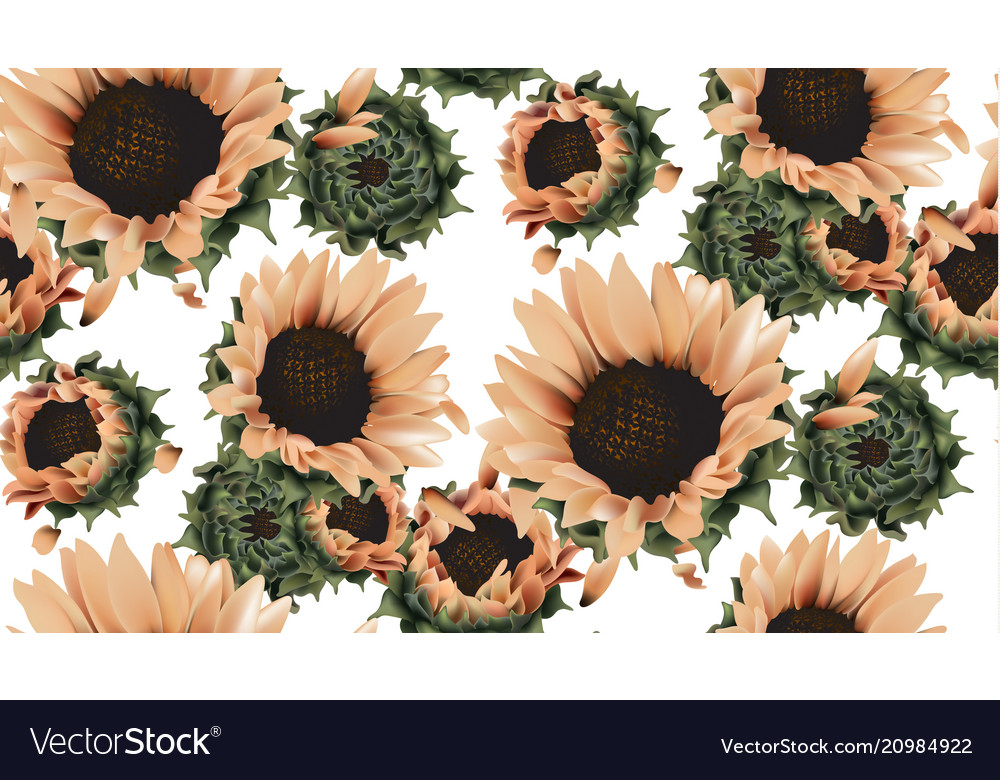 Vintage sunflowers seamless pattern background