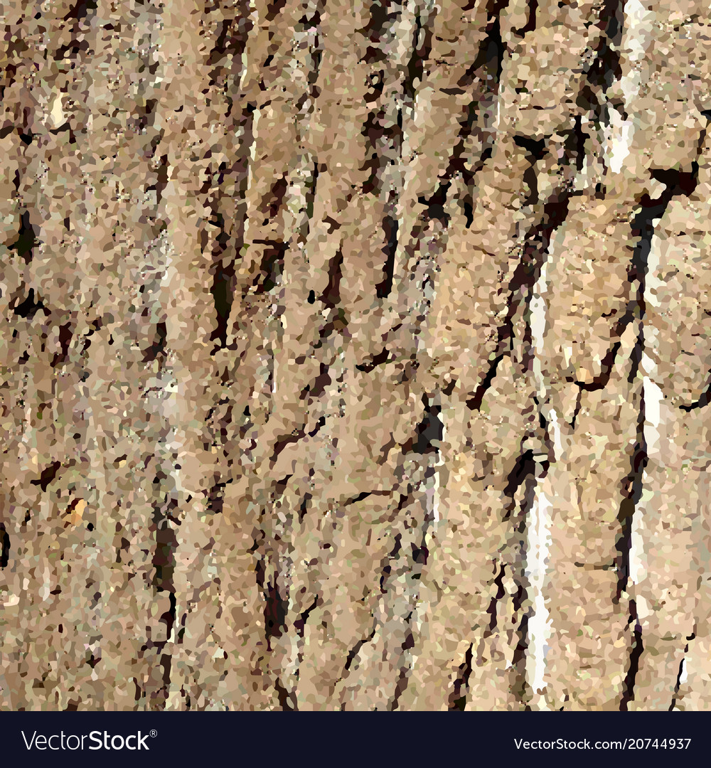 Bark pattern background relief texture of an old