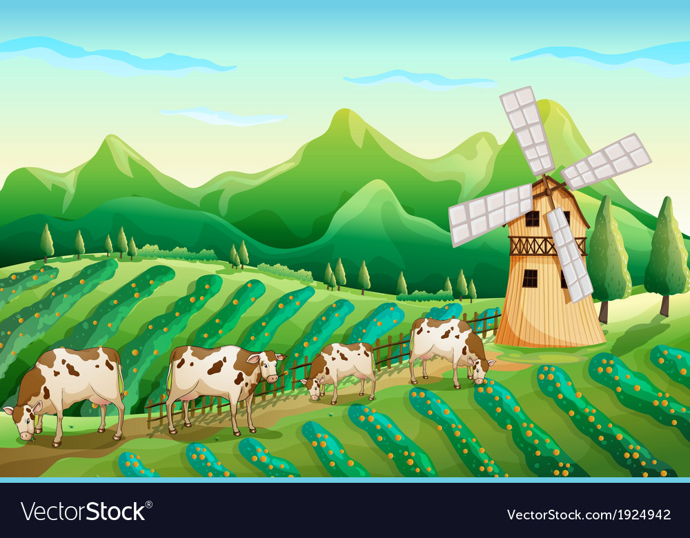 A farm with cows vector image