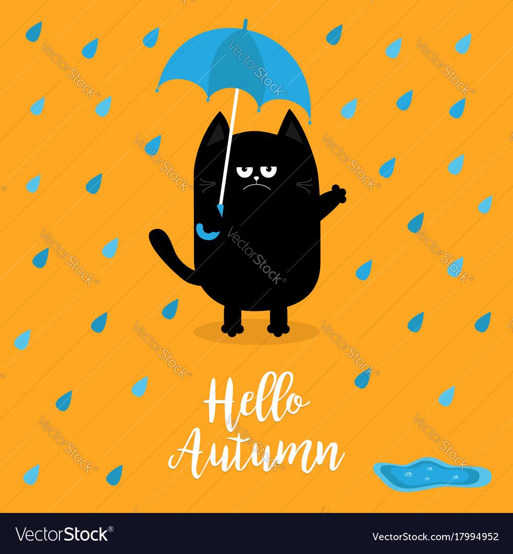 Hello autumn black cat holding blue umbrella rain