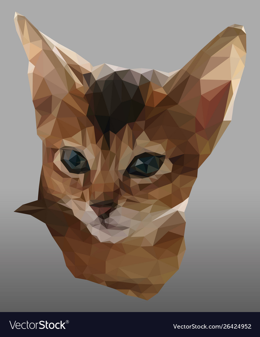 Triangulated portrait red and white kitten