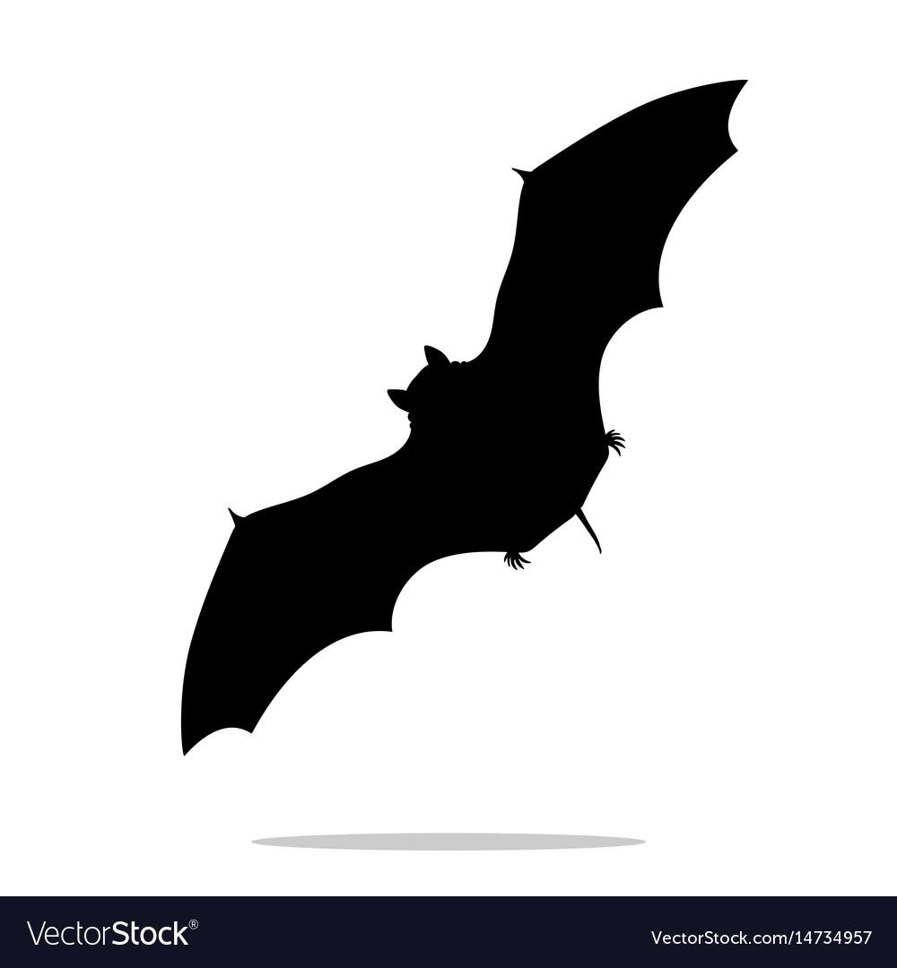 Bat mammal black silhouette animal vector image